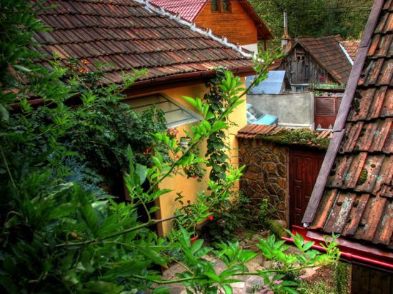 casa ocna de fier 7 m